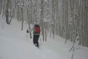 Skier Gail Sovick heads-up the front side of Snodgrass mid storm.